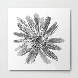 Daisy One White Metal Print