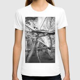 Cottontip Tamarin T-shirt