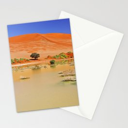 Water in the Namib desert after rain season, Namibia Stationery Cards