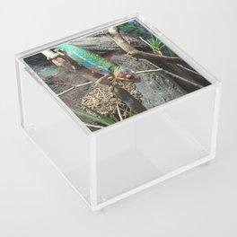 Color changer Acrylic Box