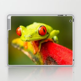 Red eye Frog Laptop & iPad Skin