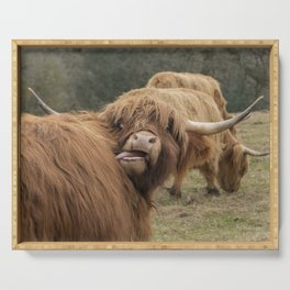 Funny Scottish Highland cow Serving Tray