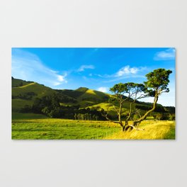 Wairarapa Canvas Print