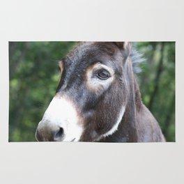 Miniature Donkey Rug