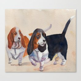 Basset hounds - Double trot Canvas Print