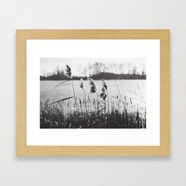 December at the Lake Framed Art Print