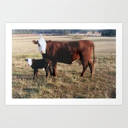 How Now Brown Cows #cows #farm  Art Print