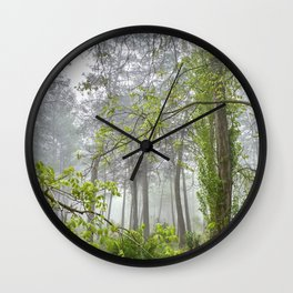 Foggy morning into the dream forest Wall Clock