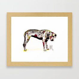 The sadness of streetdogs Framed Art Print