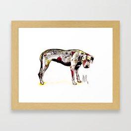 The sadness of streetdogs Framed Art Print