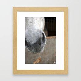 Snip Framed Art Print