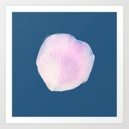 Petal by Abi Roe Art Print
