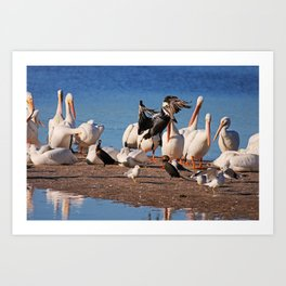 Bird Bash Art Print