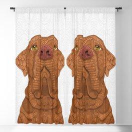 Bordeaux Mastiff Blackout Curtain