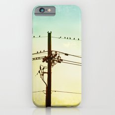 Yellow Mint Bird on Wire Photography, Turquoise Teal Birds on a Telephone Wire iPhone 6s Slim Case