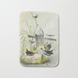 Plate IV Ornithology Birds Vintage Studies Rail American Bird Bath Mat