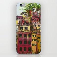 Cinque Terre iPhone & iPod Skin