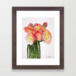 Blooming Cacti Framed Art Print