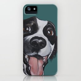Maeby the border collie mix iPhone Case