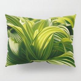 Green Goodness by Mandy Ramsey, Haines, Alaska Pillow Sham