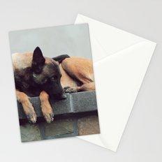 Take A Nap Stationery Cards