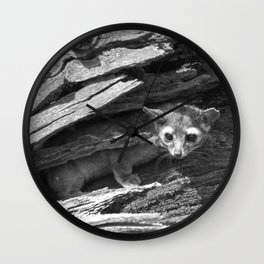 Ringtail #2 Wall Clock