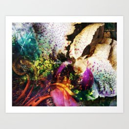 Metus Art Print
