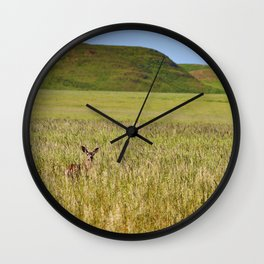 Mule Deer In Grassy Field Wall Clock