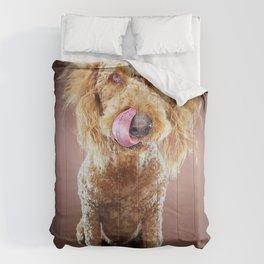 Super Pets Series 1 - Super Misiu Comforters
