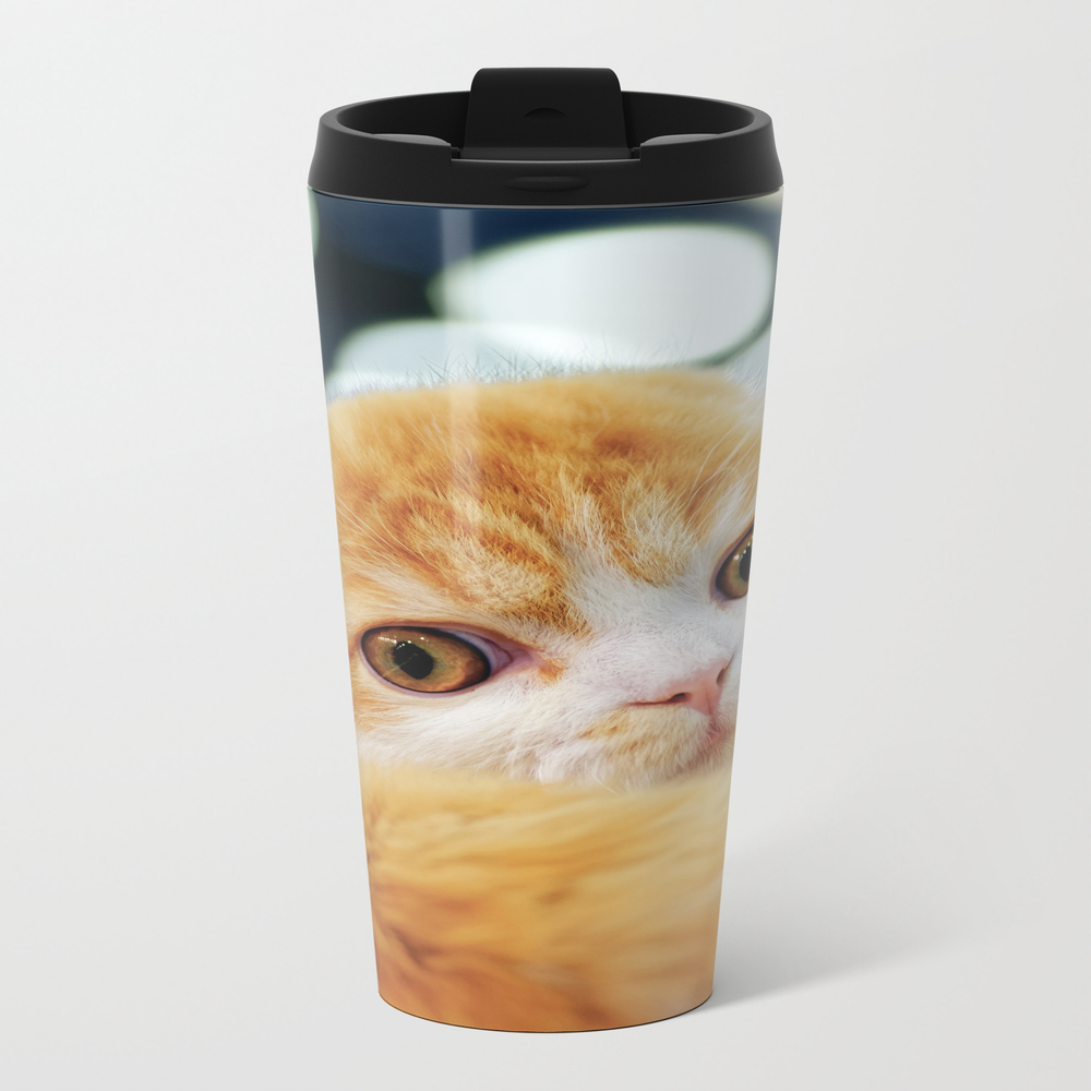 Young Scottish Fold Cat Travel Cup TRM8262514