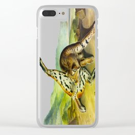 Texan Lynx Vintage Drawing Scientific Illustration Clear iPhone Case