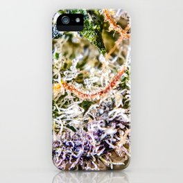 Diamond OG Indoor Hydroponic Close Up View Buds Trichomes iPhone Case