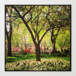 Springtime in NY Canvas Print
