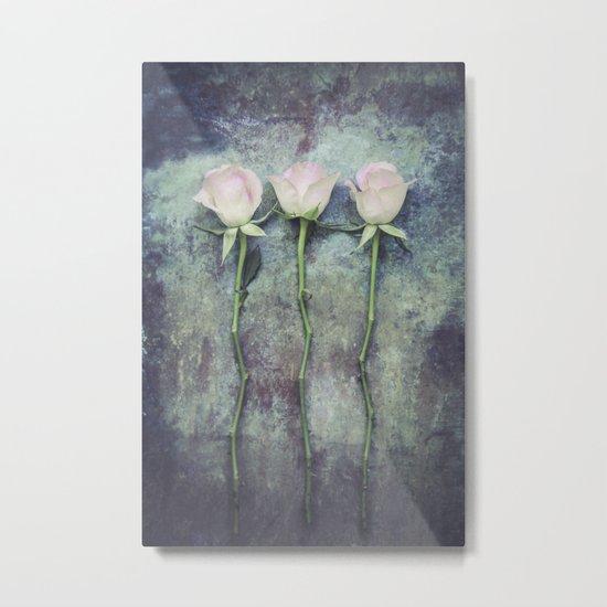 Three Roses IV Metal Print