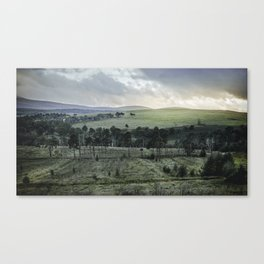 Green Wicklow Mountains | Ireland Canvas Print