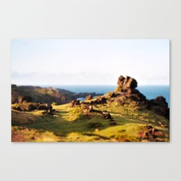 A Place To Hide From The World Canvas Print