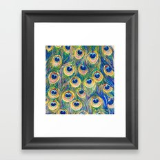 Peacock Freathers Framed Art Print