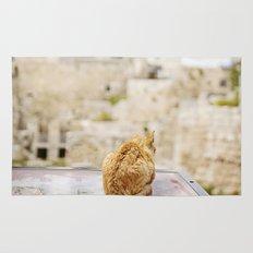 Cat Overlooking Ancient Ruins, Israel Rug
