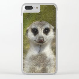 Funny Meerkat Clear iPhone Case