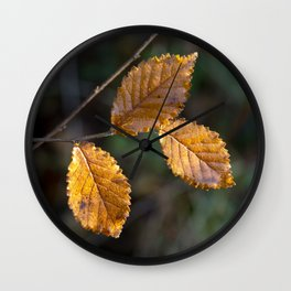Leaves in Light Wall Clock