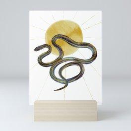 Ribbon Snake and Sun Mini Art Print