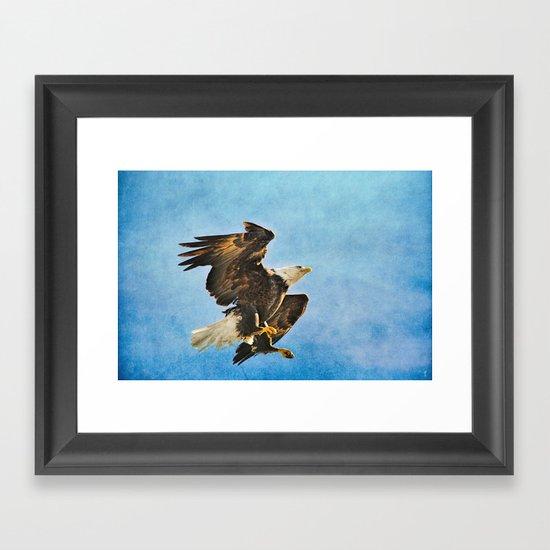 Landing Gear - Bald Eagle In Flight Framed Art Print