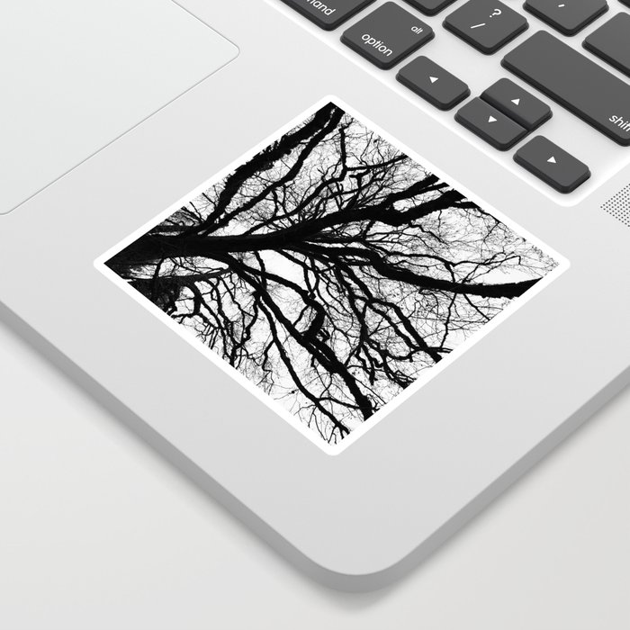 Tree forest wall art, trending minimalist Art, Minimalist, Black and White, Trees simple Sticker