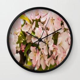 Five Petals Wall Clock