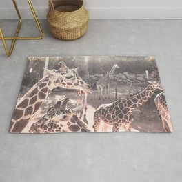 Giraffes // Spotted Long Neck Graceful Creatures in Wildlife Preserve Rug