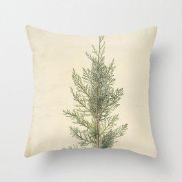 Botanical Juniper Throw Pillow