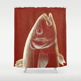 Piscibus 2 Shower Curtain