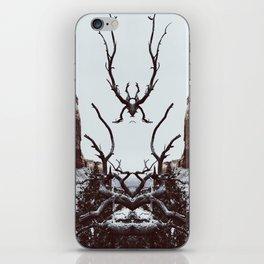 : canyon spirit : iPhone Skin
