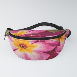 Pink and Yellow Polyanthus Fanny Pack