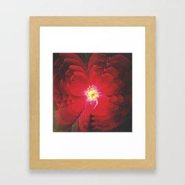 Red Flowers Framed Art Print